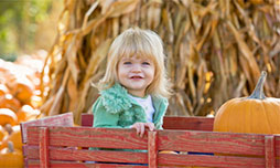 Fall Fun in the Aurora, Illinois area